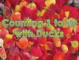 Counting 1 to 10 with Marching Ducks