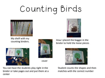 Interactive Counting Birds Notebook