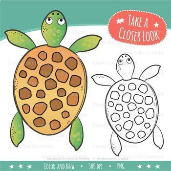 Counting Clip Art 0-20: Turtles