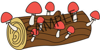 Counting Clip Art Bundle : Acorns Apples, Mushrooms and Pumpkins | Fall Pictures