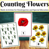 Counting Flowers Activities