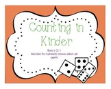 Counting In Kindergarten: CCSS K.CC.4
