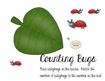 Counting Ladybugs