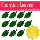 Counting Leaves Clipart