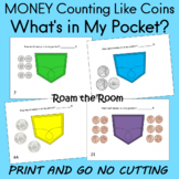 MONEY  Counting Like Coins   What's in My Pocket?  roam th
