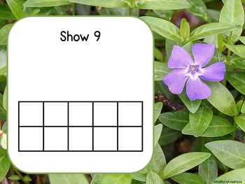 Counting Mats 1-20 Flowers