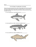 Counting Pairs of Shark Gill Slits