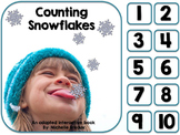 Counting Snowflakes- Adapted Winter Counting Book {Autism, Early childhood}