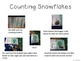 Interactive Counting Snowflakes Notebook