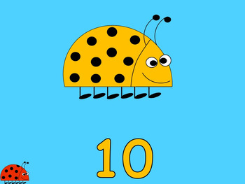 Counting Spots - Basic Counting Skills