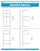 Counting Squares Worksheets