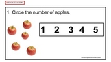 Counting and Cardinality Assessment Journal