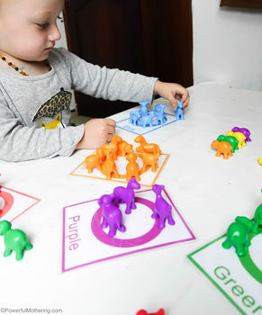 Counting and Color Sorting Activity