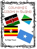 Counting and Colors in Swahili