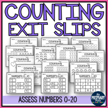 Counting and Numbers 0-20 Assessment Exit Slips