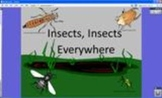 Counting and Shapes using Insects