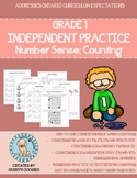 Counting to 100 by 1s, 2s, 5s, and 10s: Anytime Worksheets
