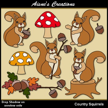 Country Squirrels