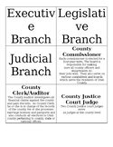 County and City Government Sort
