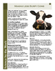 Cow Burps and Climate:   Leveled Informational Text