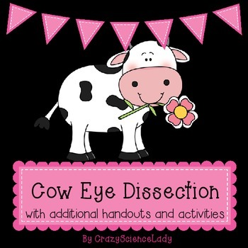 Cow Eye Dissection Teaching Resources | Teachers Pay Teachers