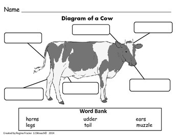All About Cows, Writing Activities, Graphic Organizers, Diagram