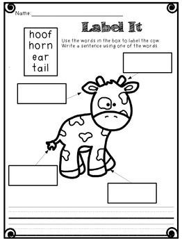 Click Clack Moo  & Cows