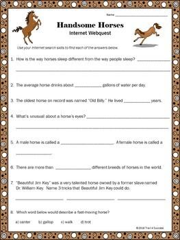 "Horses Webquest - Fun ""Handsome Horses"" Reading Internet Search Activity"