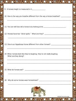 Horses Webquest - Fun