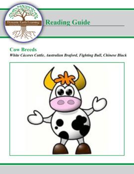 Cows: White Cáceres Cattle, Australian Braford, Fighting Bull, Chinese Black