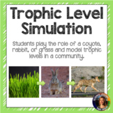 Trophic Level Simulation Activity
