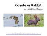 Coyote vs Rabbit!