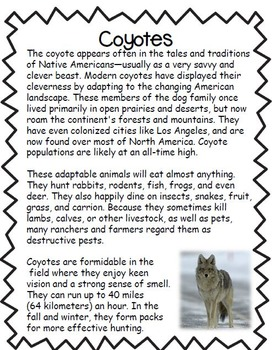 Coyotes Informational text Close Read Packet