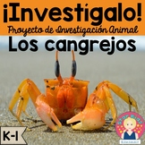 Crab Research Project and Activities IN SPANISH for K-1