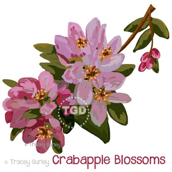 Crabapple Blossoms - crabapple clip art Printable Tracey Gurley Designs