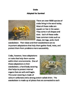 Crabs: Adapted for Survival