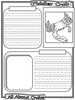 Crabs Notebooking Pages