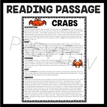 Crabs Reading Comprehension; Ocean Creatures; Summer; Invertebrates