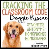 Cracking the Classroom Code™ Synonyms, Antonyms, Homophone