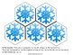Crafts for Learning STEAM Snowflake Study PDF