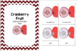 Cranberry Fruit Science Printable Pack