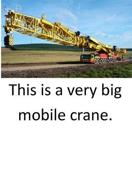 Cranes. A LOOK BOOK Easy Reader