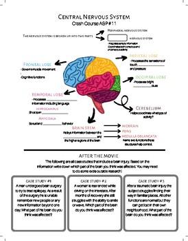 Crash Course A & P #11: Central Nervous System