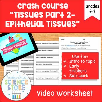 Crash Course- A&P: #3 Tissues, Part 2- Epithelial Tissues Video Worksheet