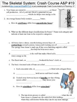 Crash Course Anatomy & Physiology #19 (The Skeletal System) worksheet