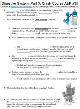 Crash Course Anatomy Physiology 35 Digestive System Part 3 Worksheet