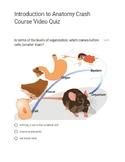Crash Course Introduction the Anatomy and Physiology QUIZ