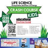 Crash Course Kids - Life Science Playlist Youtube Guide   Questions   Worksheet