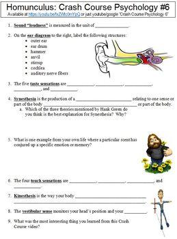 Crash Course Psychology #6 (Homunculus) worksheet