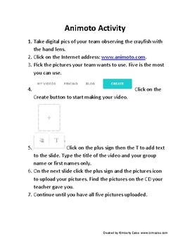 Crawfish/Crayfish Activity Booklet